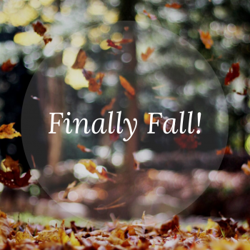 The Finally Fall Book Tag